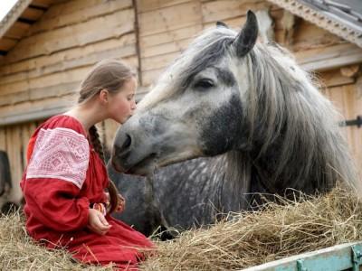 Углич достопримечательности: Музей рабочей лошади