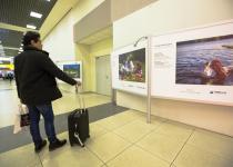 """фотовыставка """"Путешествутйте дома"""" в Шереметьео"""